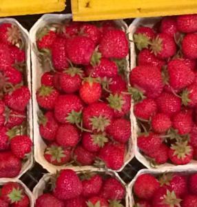 Hof Baumgarte - Hofladen - frische Erdbeeren